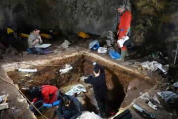 提取古人DNA新方式科学家从考古沉积物成功提取尼安德特人DNA