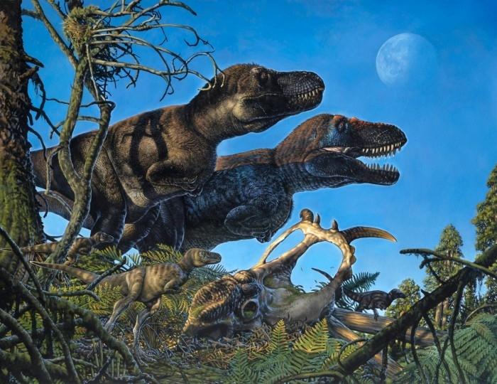 研究小组在北极地区发现幼年恐龙遗迹显示恐龙可能是温血动物